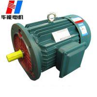 华能电机生产厂家YE2-100L四极高效节能电机