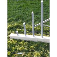 德国Sommer剖面积雪温度传感器SCA