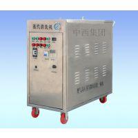 中西dyp 蒸汽清洗机/蒸汽洗车机 型号:M315937库号:M315937