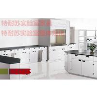 广东实验室废气处理工程 广州中央实验台价格