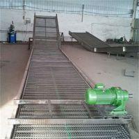 强盛厂家生产碳钢网带输送机 食品网带爬坡输送线 按厂家需求定做