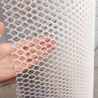 低价批发塑料平网 雏鸡雏鸭铺底网 养殖围网