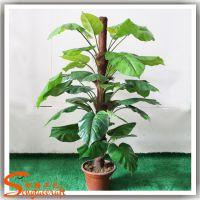 厂家批发仿真 绿航绿萝花卉 pu家居室内装饰观赏室内盆景植物