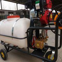 萍乡优质高压打药机 担架式打药机 手推式园林园艺喷雾器