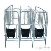 优质的母猪定位栏 母猪保胎限位栏 大猪围栏利祥农牧养殖设备
