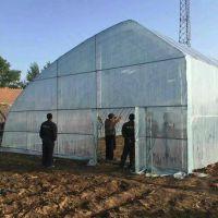新型蔬菜大棚骨架,新型蔬菜大棚建设造价,安阳丰源农业