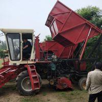 本厂专业研制玉米秸秆青储机 秸秆粉碎收割机 农用机械 大型铡草机