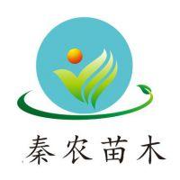 蓝田县秦农农产品种植销售专业合作社