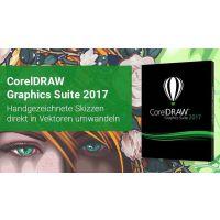 正版CorelDRAW X6 矢量图软件 最新授权 多少钱?