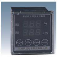 代越直销长沙数显双温度控制器岳阳智能双路温度控制器常德温控器