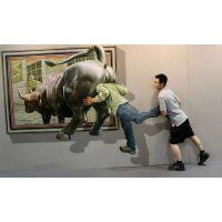 3D立体画定制出售3D画展  3D墙体画地画彩绘低价出售
