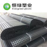 厂家直销塑料排水板 地下车库屋顶绿化HDPE疏水板 可来样定制