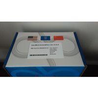 笃玛 鸡激肽原1(KNG1) ELISA 试剂盒 介绍