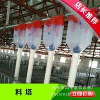 定制不同米数猪场专用自动化料线自动化饲喂设备