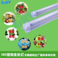 LED植物生长灯T8T5灯管 多肉盆栽补光植物工厂大棚瓜果蔬菜补光灯XIHV