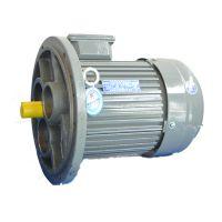 YXJ 200L1-6-18.5x9 系列减速机专用电机-山东开元