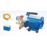洗车神器高压家用洗车机220V高压水枪泵