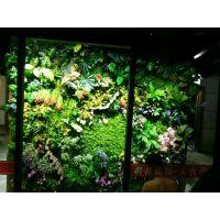 仿真植物墙塑料草坪人造地毯草坪假草皮背景墙装饰花仿真花假绿植