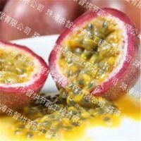 沧州智烘牌百香果烘干机的设备价格范围,精工细作的百香果干燥系统ZH-JN-HGJ03