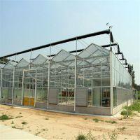 玻璃温室大棚建设工程价格 蔬菜花卉温室大棚建设工程