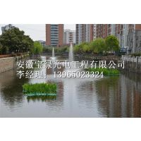 安徽宝绿供应喷泉式曝气机