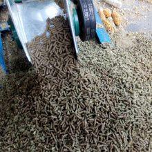 鱼粉/谷物/秸秆/油脂/青饲料颗粒机 高效节能出宏兴机械厂价直销