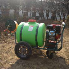 正品畅销手推式苹果葡萄树喷药机大容量喷雾器汽油四轮打药车
