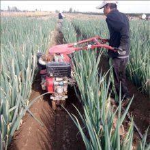 大葱大姜种植开沟机 手扶式田园管理机 土豆开沟培土机
