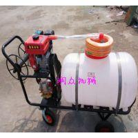 手推汽油米棉花喷雾器 农作物框架式打药机 麦田卷管喷雾器