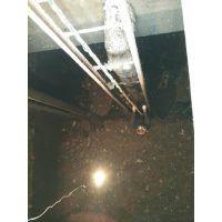 湖州中潜水下检测 摄像取证 堵漏 救助抢险 河道疏浚