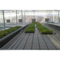 特卖汇潮汐式-花卉苗床-育苗苗床-热镀锌焊接-华耀农业