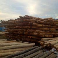 河北任丘市振华现货供应防腐油木杆 电线杆 油炸杆 通信电杆