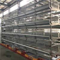 宏盛农牧机械设备厂家直供自动化养鸡设备