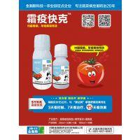 大棚西红柿霜霉病早晚疫病防治好药