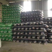 绿化环保用盖土网 实用一针半盖土网 工地防尘网