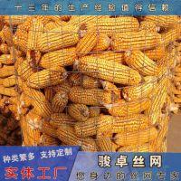 圈玉米专用电焊网 圈玉米钢板网养殖铁丝网厂家直销