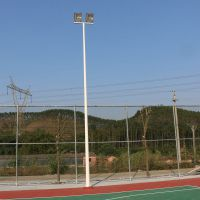 小区公园照明灯杆厚度3.0mm 肇庆校园篮球场照明灯杆批发 柏克颜色可定制