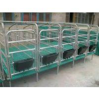 小猪保育床尺寸 优质复合板崽猪保育床生产厂家