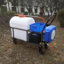 全新畜禽养殖消毒灭菌机公园推车喷雾器105L家用小型除虫机