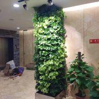 仿真植物墙东莞哪里有卖