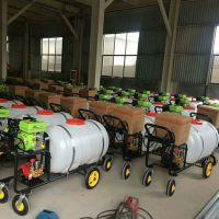 普航园林树木打药机 高效率水田打药机 轮距可调式喷药机质保机械