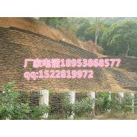 http://himg.china.cn/1/4_422_243686_800_600.jpg