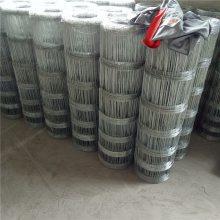不锈钢网片 304不锈钢 焊接电焊网片--安平优盾