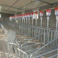 河北畜牧业海宇牌自动化料线 让饲喂更省力 让饲料更卫生