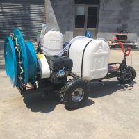 三轮自走式高杆喷雾器厂家 佳鑫汽油打药机 果园杀虫机