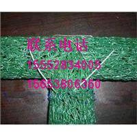 http://himg.china.cn/1/4_424_237580_200_166.jpg