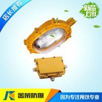 金荣BFC8120防爆强光泛光灯(应急)灯