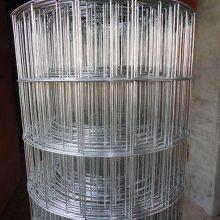 镀锌网片 小丝电焊网厂家 河北碰焊网