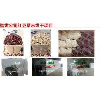免费技术咨询的智烘牌红豆薏米烘干系统,体积小的红豆薏米干燥设备生产商ZH-JN-HGJ03