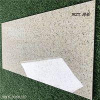 300*600薄板陶瓷麻面外墙砖墙砖地砖别墅外墙地砖